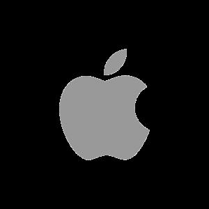 stilographico apple - caratteristiche di un logo