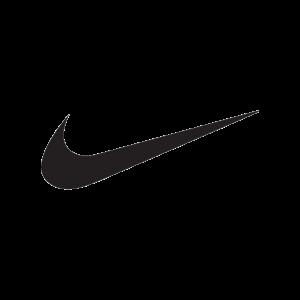stilographico nike - caratteristiche di un logo